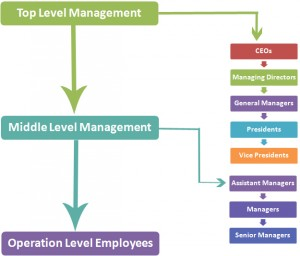 Levels in Business Hierarchy