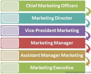 Marketing Corporate Hierarchy