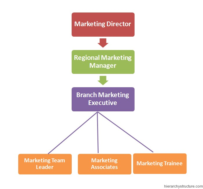 Marketing Jobs Hierarchy