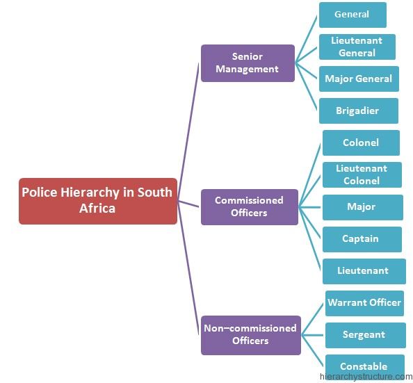 Police Hierarchy in South Africa