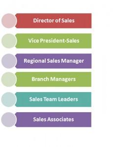 Sales Management Hierarchy