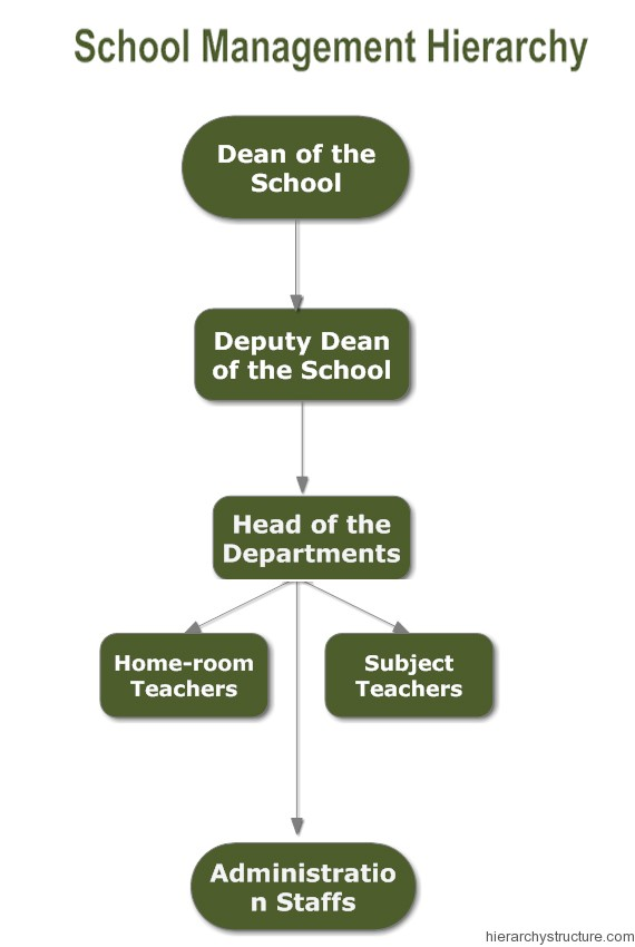 School Management Hierarchy