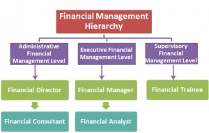 Financial Management Hierarchy