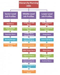 Hierarchy Nursing Jobs