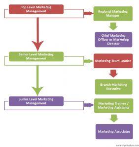 Marketing Management Hierarchy