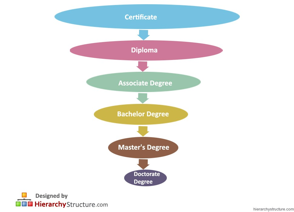 Education Degree Hierarchy Chart | Hierarchystructure com