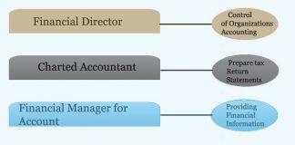 Financial Department Hierarchy