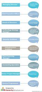 IBM Career Hierarchy