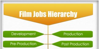 Film Jobs Hierarchy Hierarchical Structures And Charts