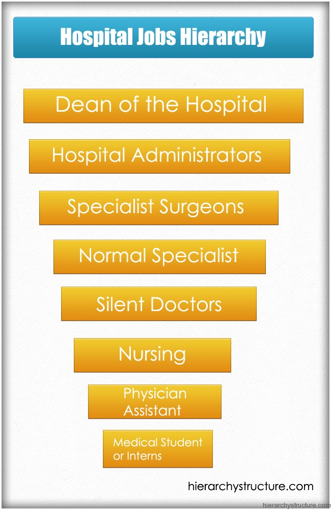 Hospital Jobs Hierarchy Hierarchical Structures And Charts
