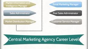 Marketing Agency Hierarchy