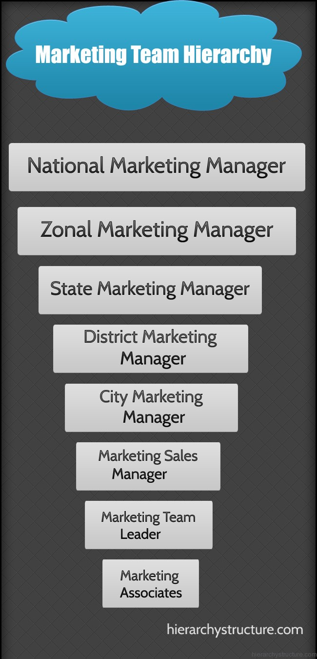 marketing team hierarchy