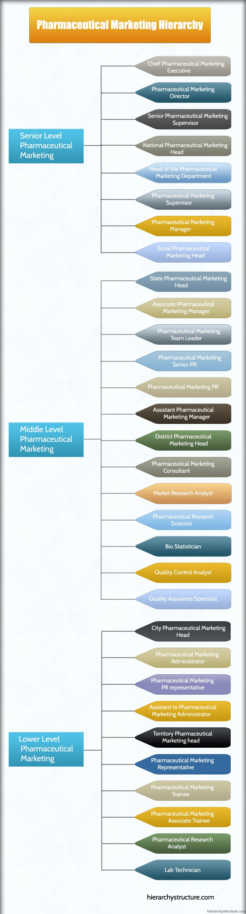 Pharmaceutical Marketing Hierarchy