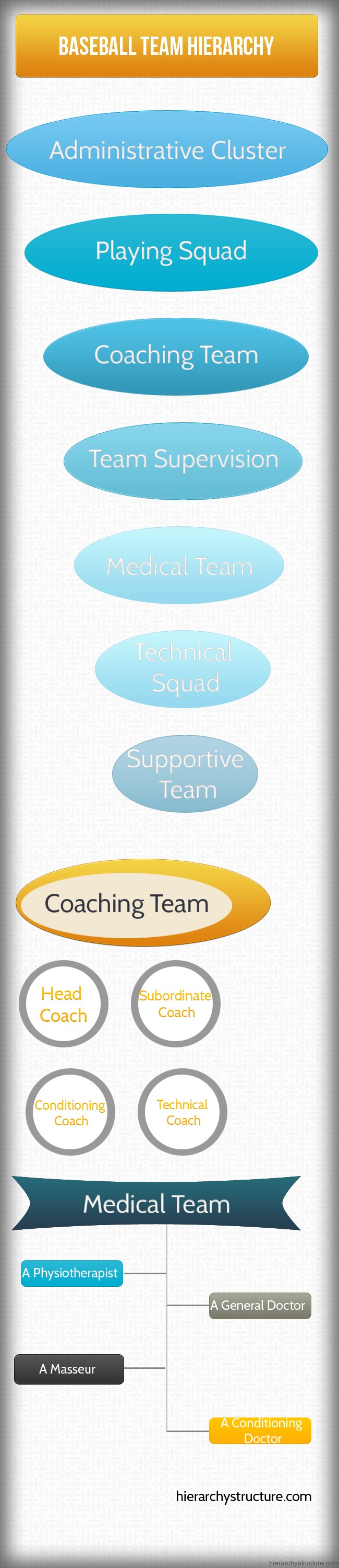 Baseball Team Hierarchy