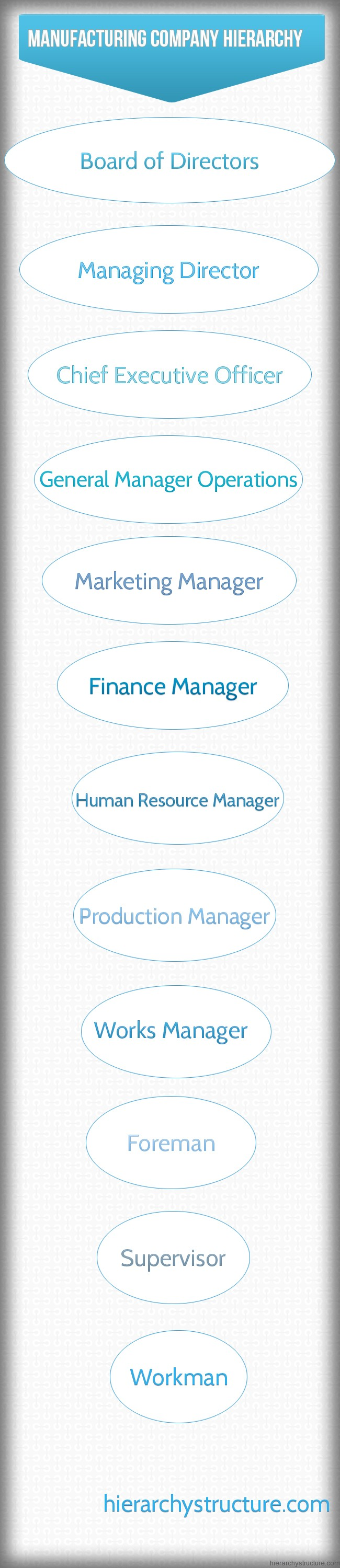 Manufacturing Company Hierarchy