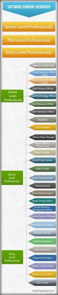 software company professionals hierarchy chart hierarchy. Black Bedroom Furniture Sets. Home Design Ideas