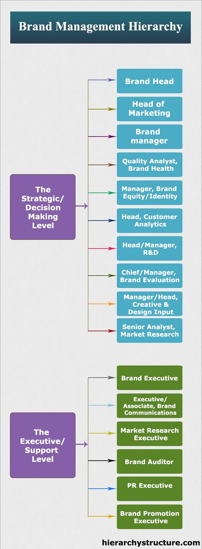 Brand Management Hierarchy