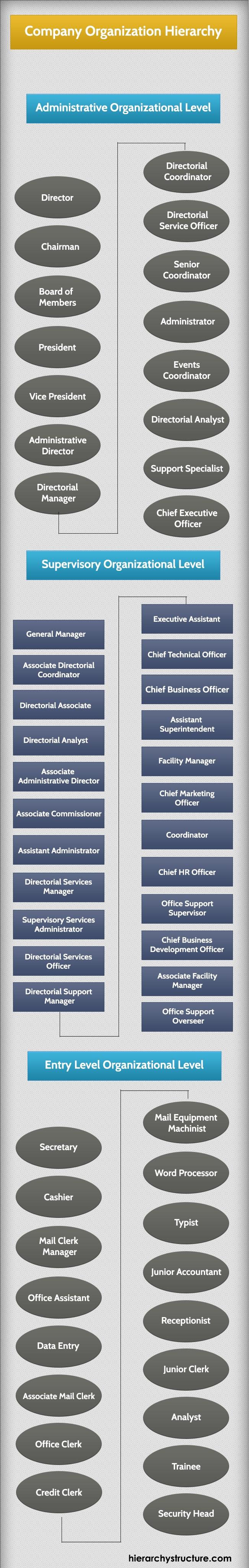 Company Organization Hierarchy