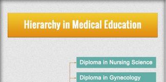 Hierarchy in Medical Education