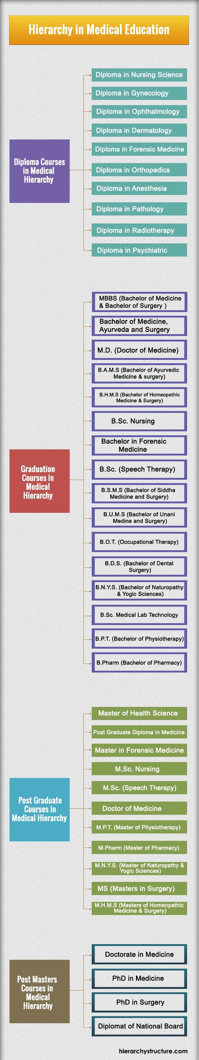 Hierarchy in Medical Education