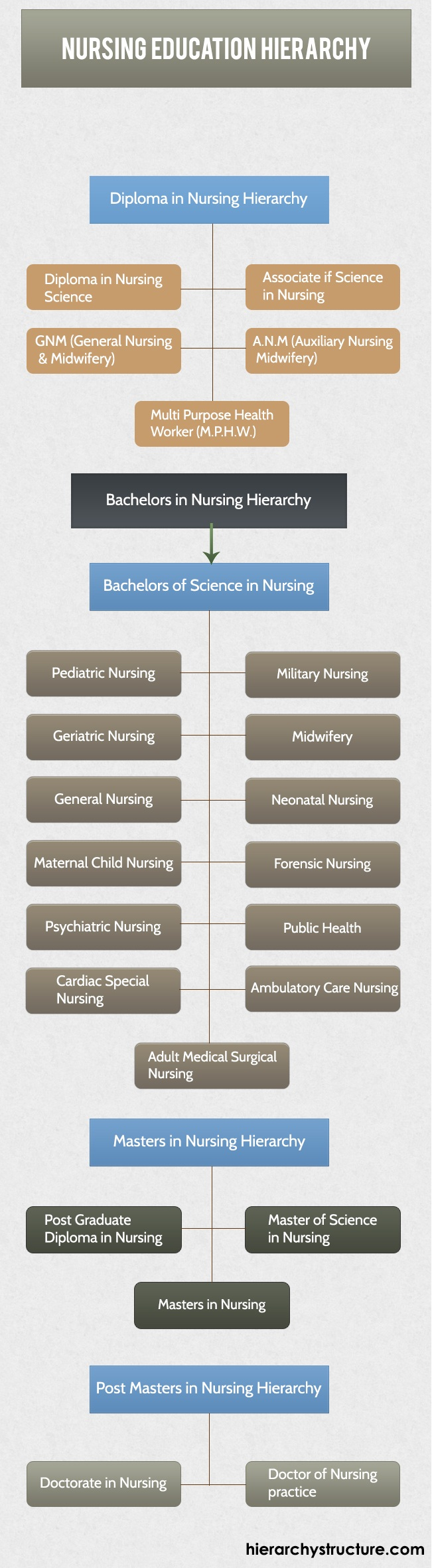 Nursing Degree Hierarchy Plan | Hierarchy structure