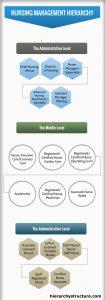 Nursing Management Hierarchy