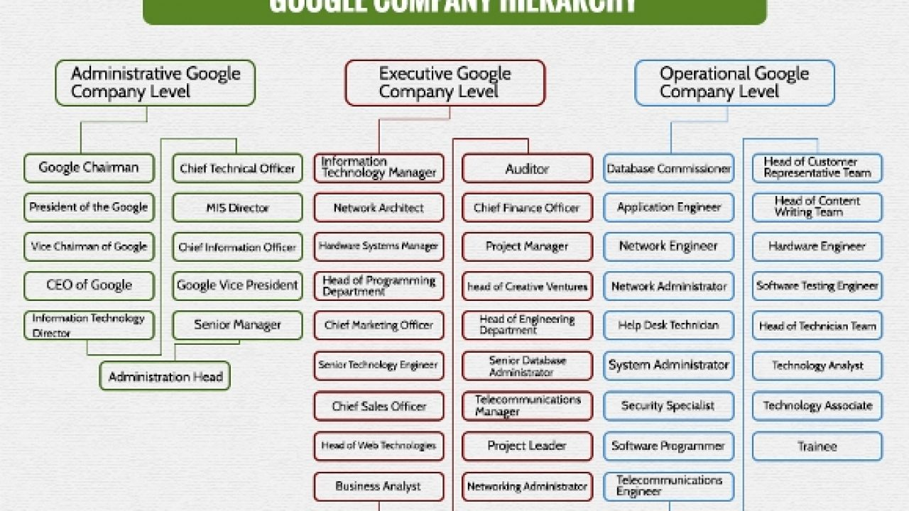 Levels Of Google Company Hierarchy Chart Hierarchystructure