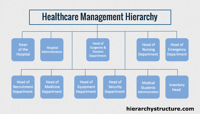 Healthcare Management Hierarchy