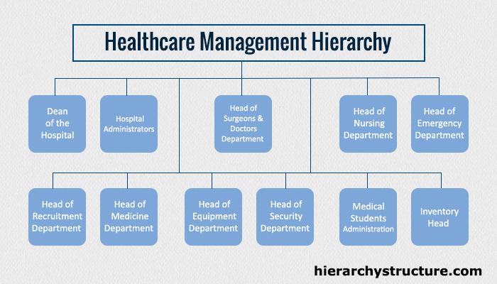 Healthcare Management Hierarchy