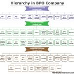 Hierarchy in BPO Company