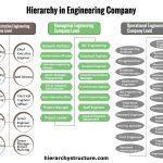 Hierarchy in Engineering Company