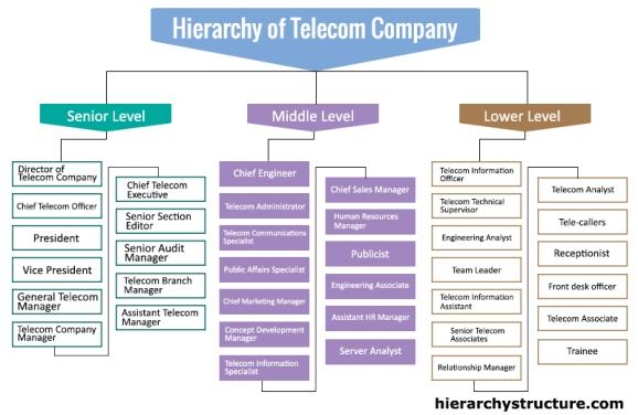 Hierarchy of Telecom Company