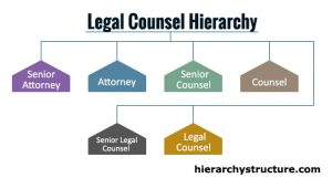 Legal Counsel Hierarchy