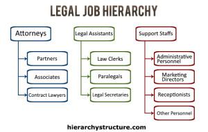 Legal Job Hierarchy