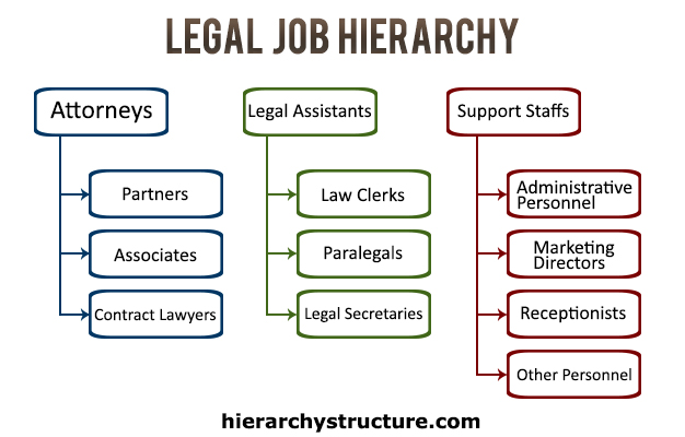 Legal Job Hierarchy