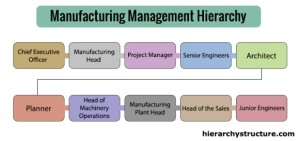 Manufacturing Management Hierarchy