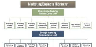 Marketing Business Hierarchy