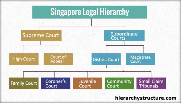Hierarchy Of Singapore Legal System Hierarchy Structure
