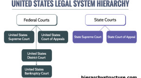 United States Legal System Hierarchy