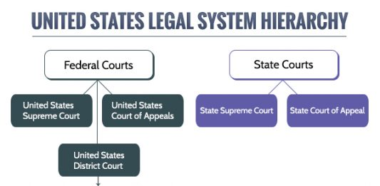 how does the u s court system compare to other countries court Compare and contrast the different types of courts that exist in the us federal court system in all other cases, however, the court in the american legal.
