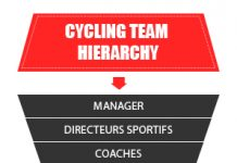 cycling team hierarchy