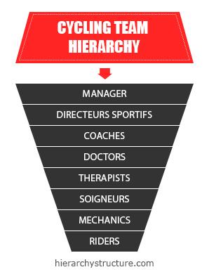 cycling team hierarchy