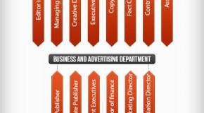 Magazine Job Hierarchy