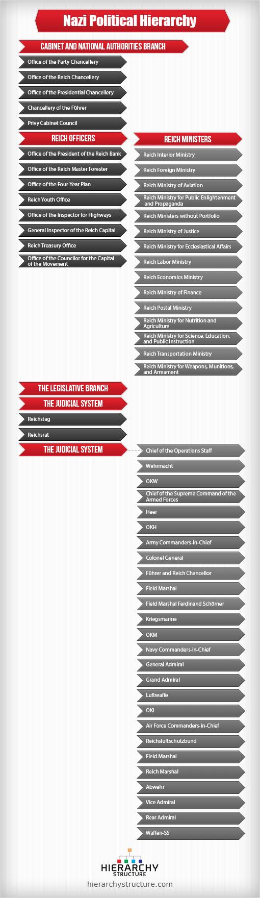 nazi political hierarchy