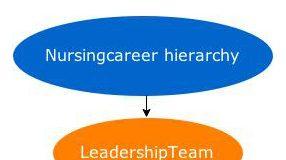 Nursing career hierarchy