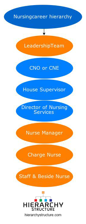 leadership and nursing career If you work in the healthcare field, especially in nursing, your focus might (understandably) be on direct patient care and teamwork with other medical professionals.
