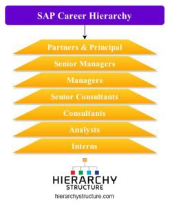 SAP career hierarchy