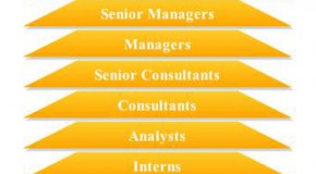 SAP Career Hierarchy