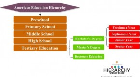 American Education Hierarchy