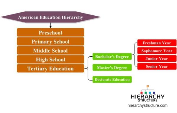 american education hierarchy